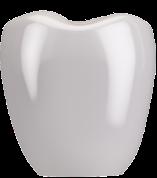 白い被せる歯(上部構造)